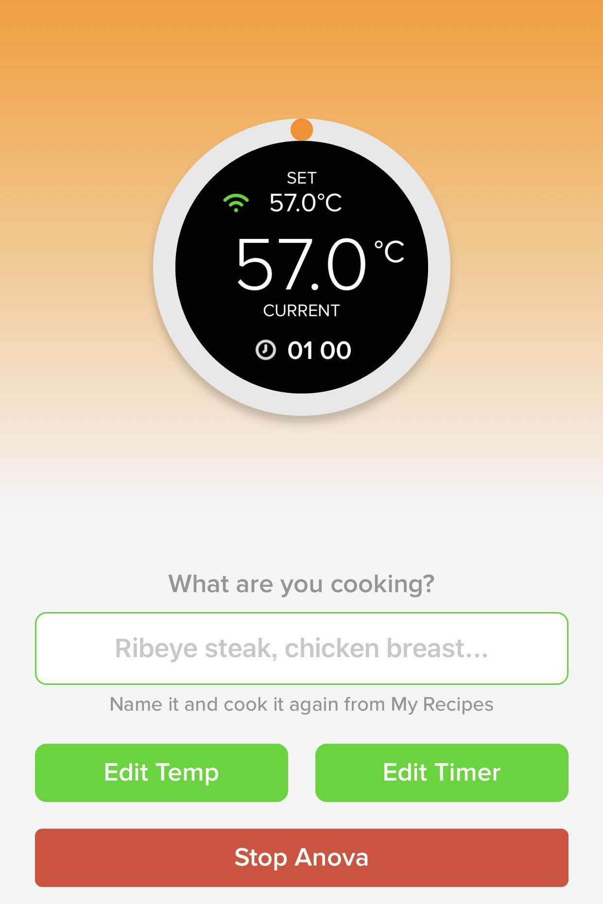 Anova アノーバ 低温調理器 レビュー 使い方 ステーキ 失敗 メイラード反応