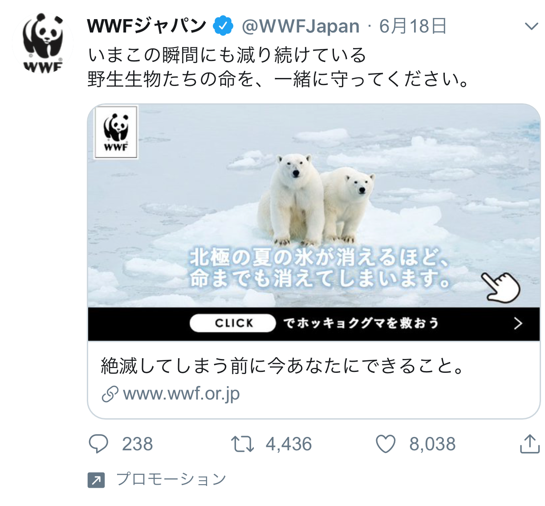 WWF 世界自然保護基金 寄付 控除 節税 上限 金額 やり方